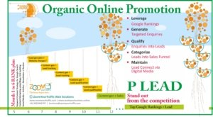 Online Promotion Programs For Businesses