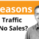 Why Is Your Website Traffic Not Converting Into Sales For Your Business?